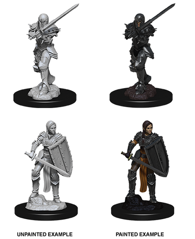 D&D Miniatures: Nolzur's Marvelous Miniatures: Human Fighter