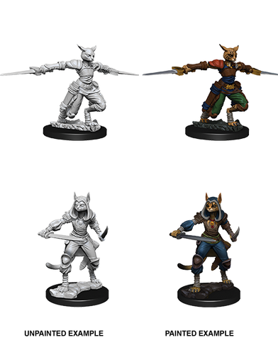 D&D Miniatures: Nolzur's Marvelous Miniatures: Tabaxi Rogue