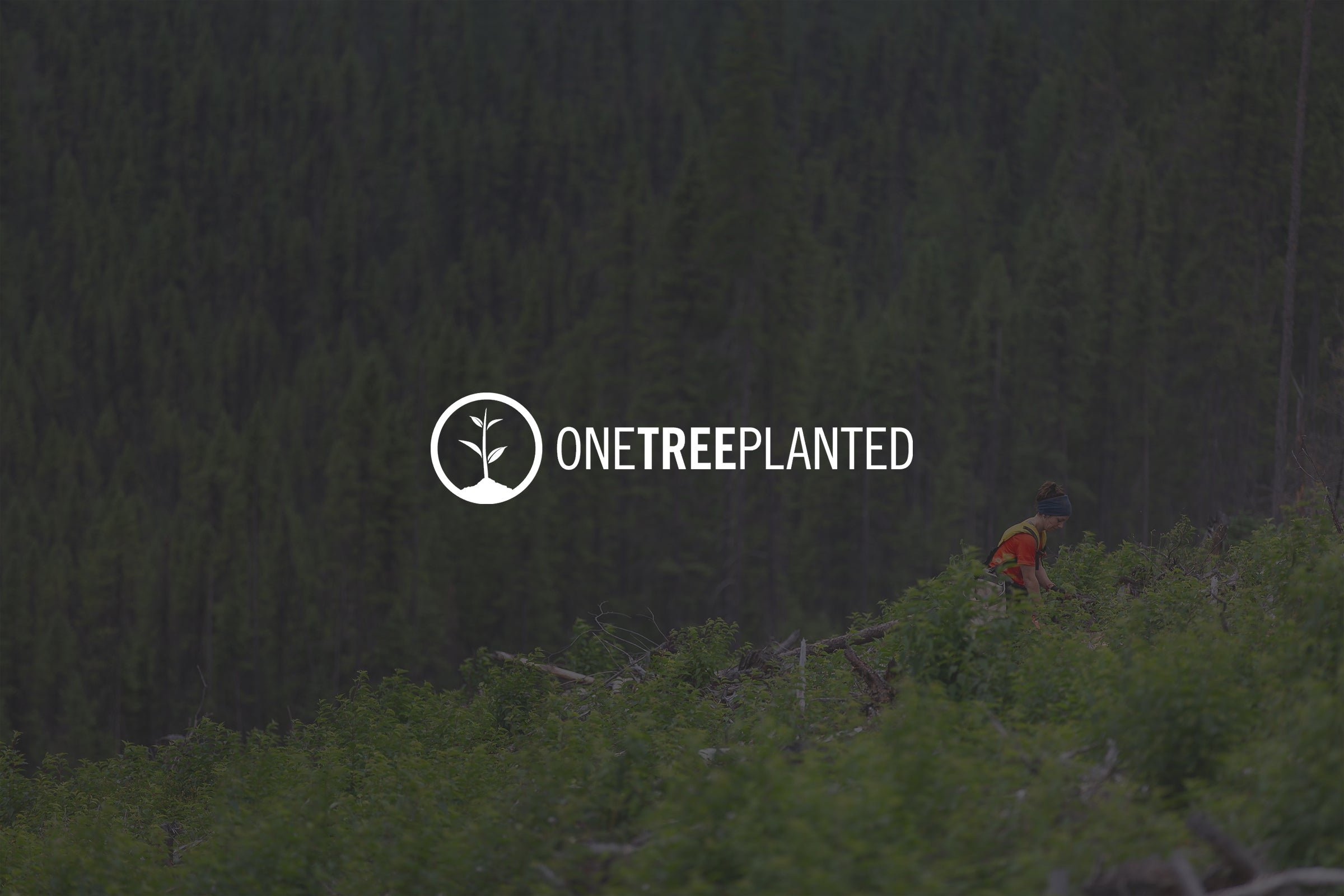 Meet our official charity partner - One Tree Planted