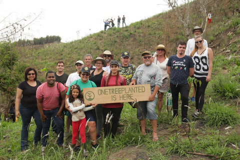 One Tree Planted - Forester Products Partnership