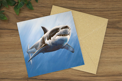 Shark Greetings Card