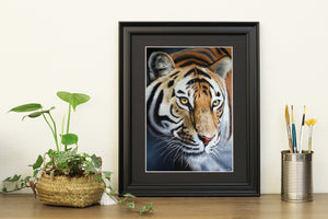Amur Tiger Prints