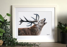 Calling Stag Print