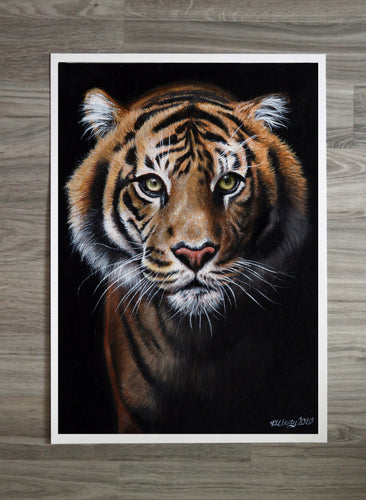 Sumatran Tiger Prints