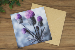 Thistle Greetings Card