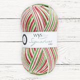 """CANDY CANE!"" Signature 4ply"