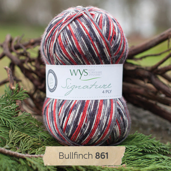 """Bullfinch"" Signature 4ply"