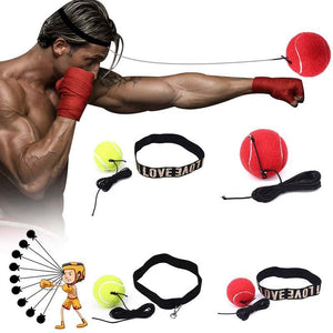 SPEED-PUNCH BOXING TRAINER