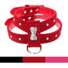 Rhinestone Bone Velvet & Leather Dog Harness