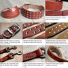 Studded Genuine Leather Collar & Leash Set