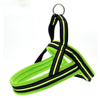 Reflective Safety Harness