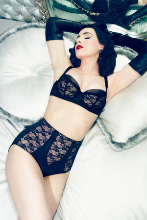 Dita Von Teese Sheer Witchery High Waist Brief - sizes S - 2X