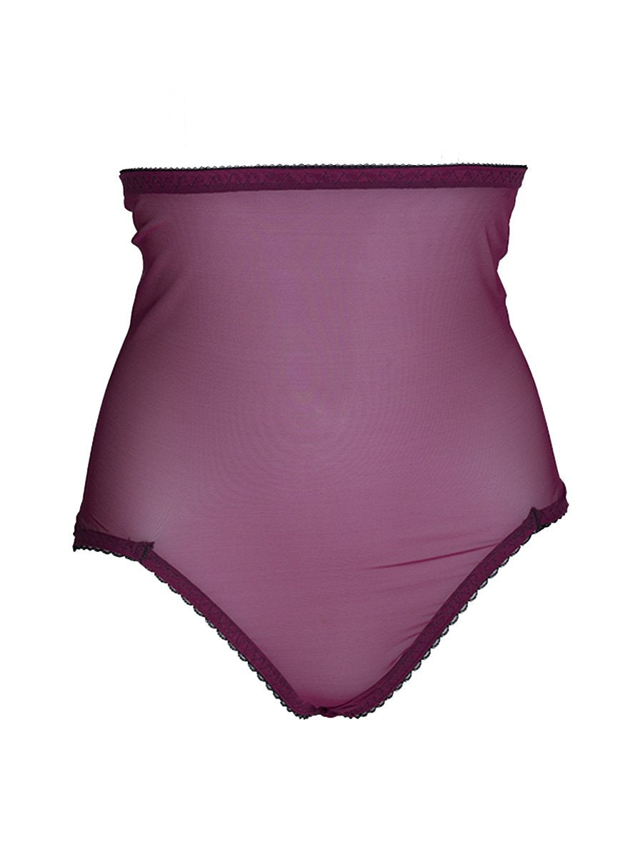 Van Doren High Waist Brief Wine Mesh