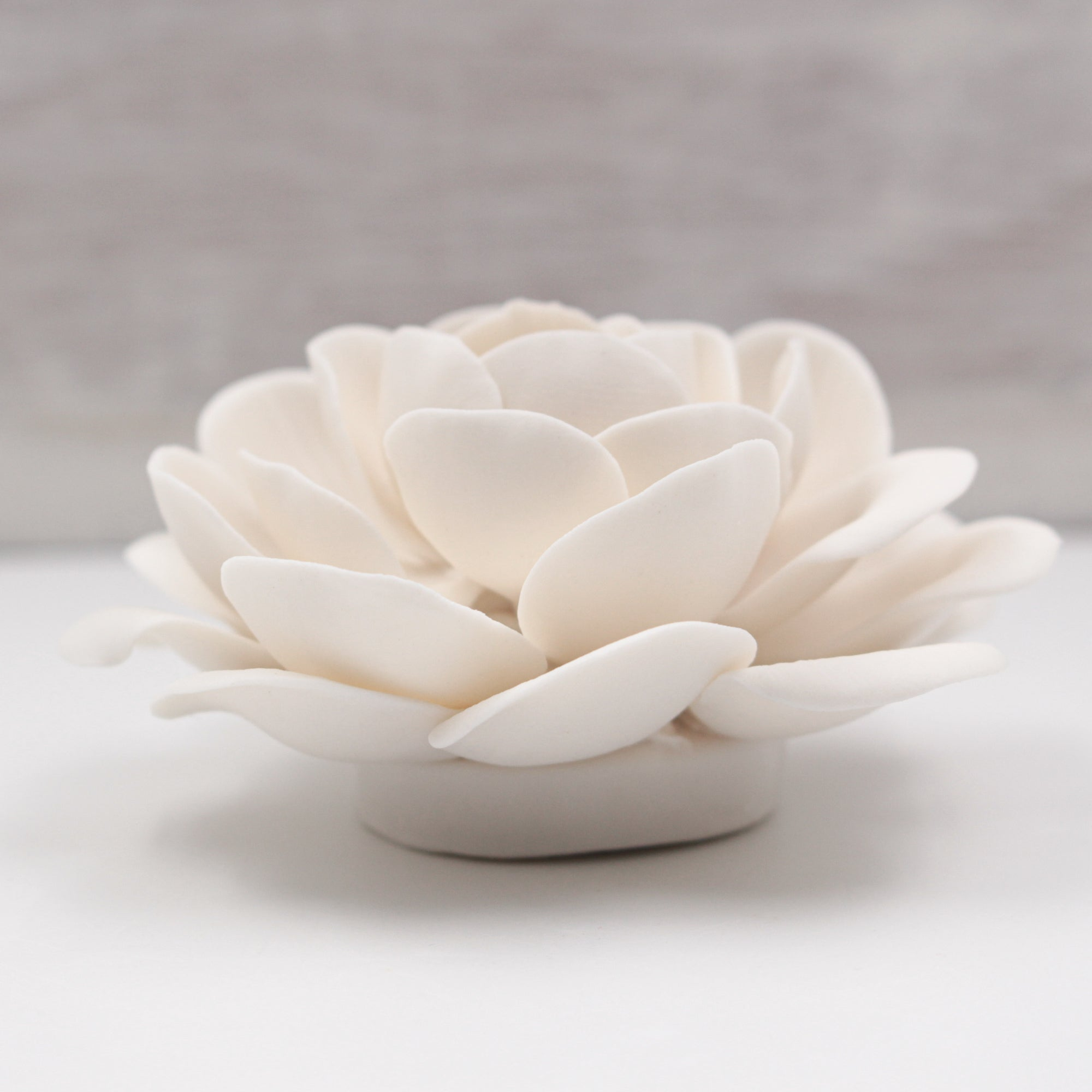 Small Porcelain Camellia - Handmade Porcelain Flower for Interior and Event Decoration - Made in France by Alain Granell – Home and Wall Decoration