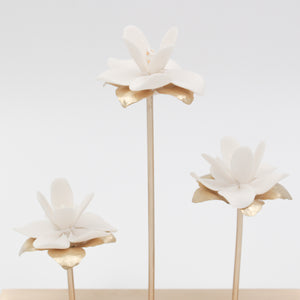 Porcelain magnolia flowers on brass tree for interior decoration - by Alain Granell