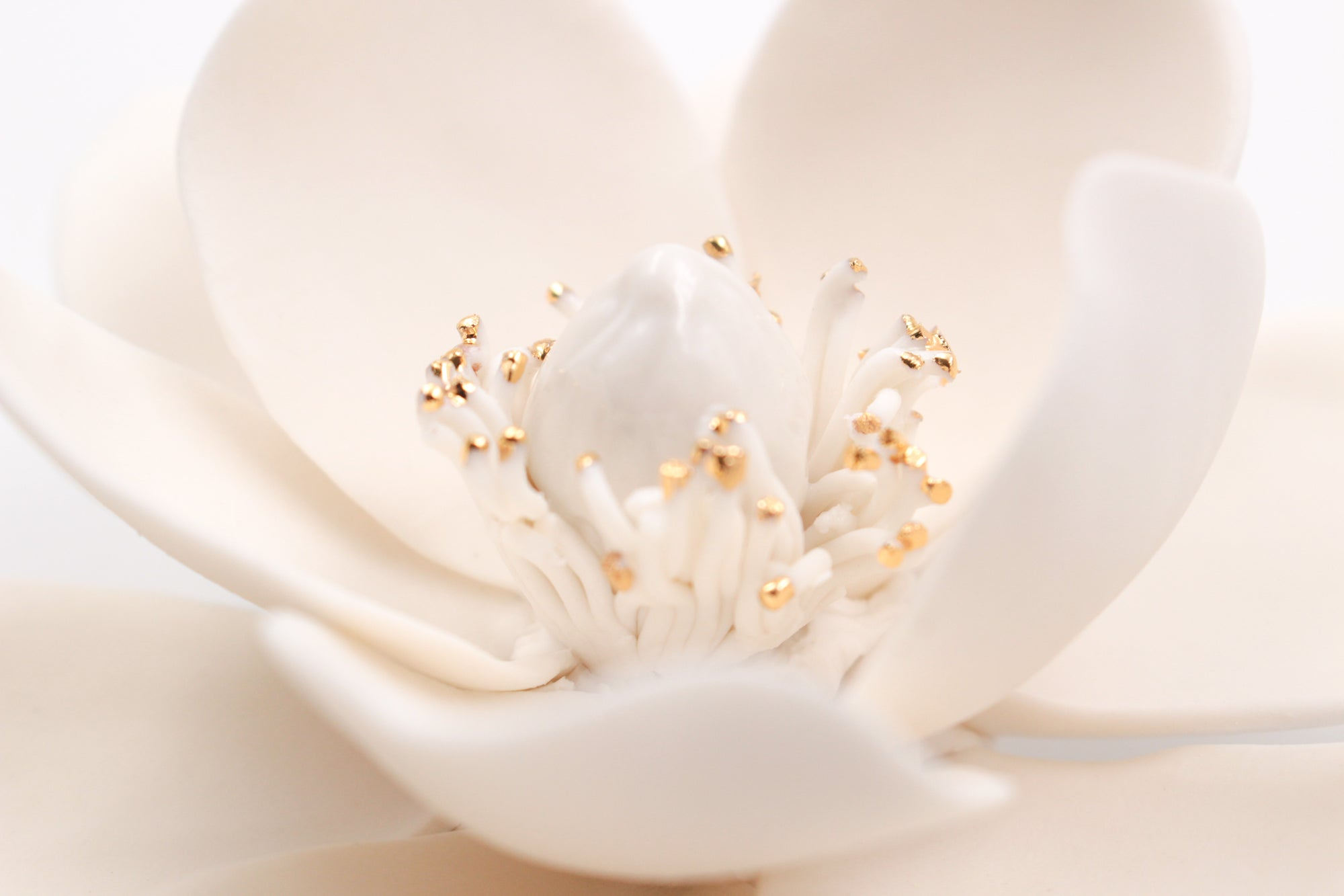 Golden Porcelain Magnolia- Handmade Porcelain Flower for Interior and Event Decoration - Made in France by Alain Granell – Home and Wall Decoration