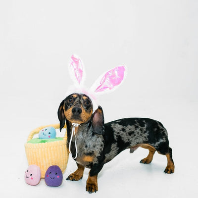 Dog Bunny Ears - Pink-Add-On-Gift Spawt