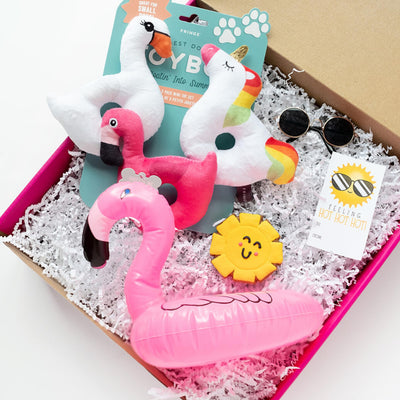 Pool Pawty Gift Set-Puppy Care Package-Gift Spawt