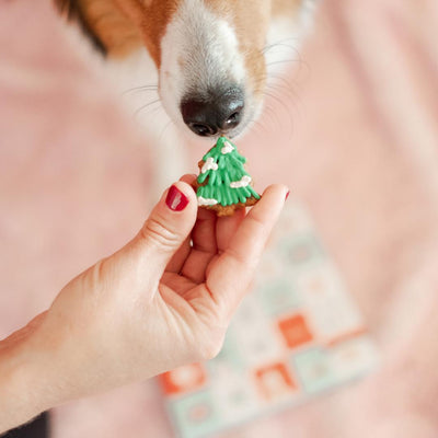 Dog Advent Calendar-Dog Cookie-Gift Spawt