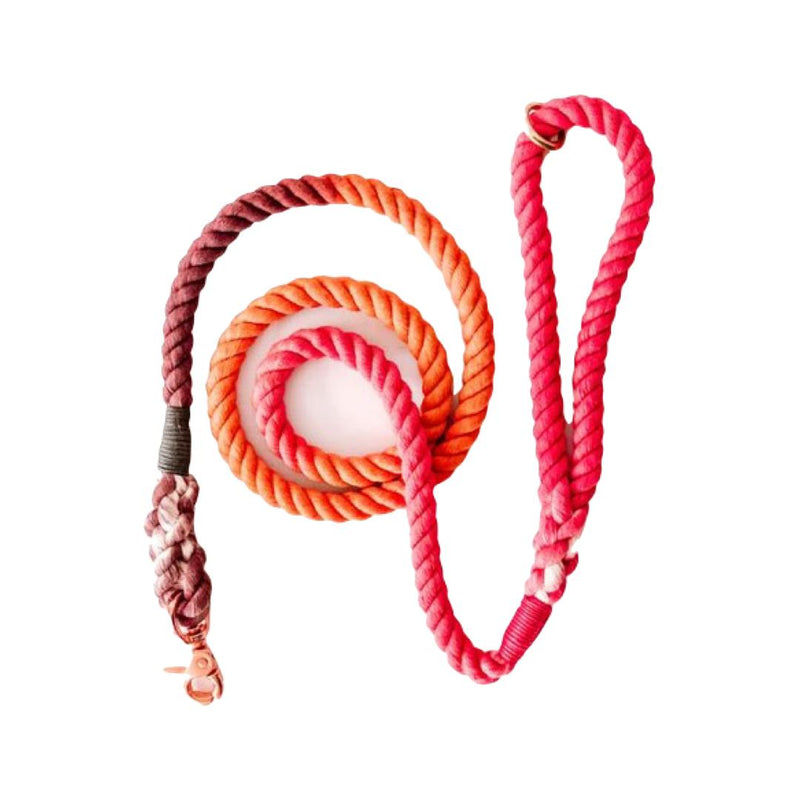 Autumn Ombre Rope Leash-Leash-Gift Spawt