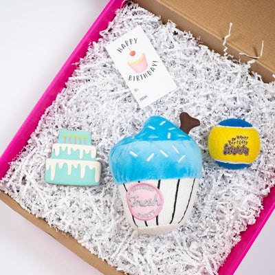 Celebrate with a Pupcake Gift Set (Blue)-Puppy Care Package-Gift Spawt