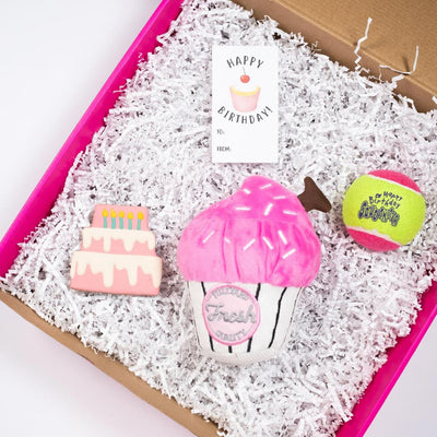 Celebrate with a Pupcake Gift Set (Pink)-Puppy Care Package-Gift Spawt