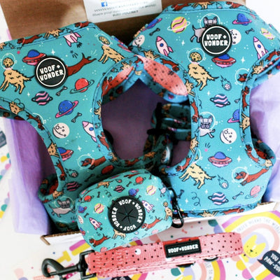 Space Dogs Adjustable Harness-Harness-Gift Spawt