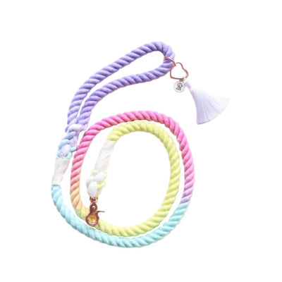Rue's Rainbow Remix Rope Leash-Leash-Gift Spawt