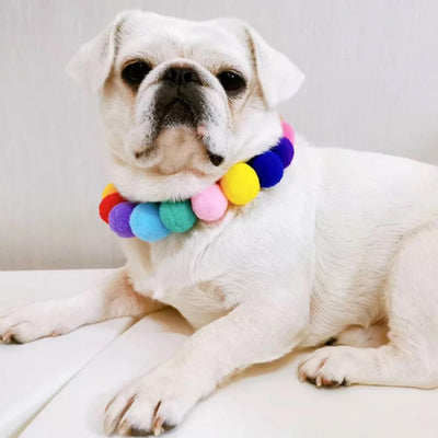 Rainbow Pom Pom Dog Necklace-Add-On-Gift Spawt