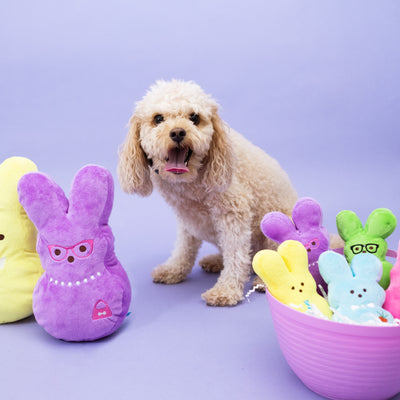XL Peeps Easter Dog Toy Set-Plush Dog Toy-Gift Spawt