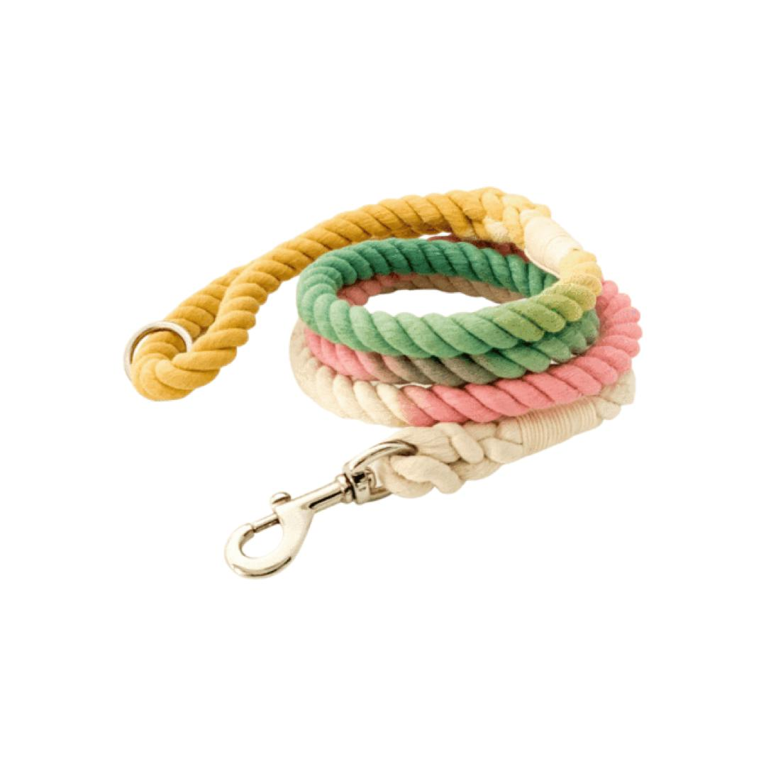 Spring Ombre Rope Leash-Leash-Gift Spawt