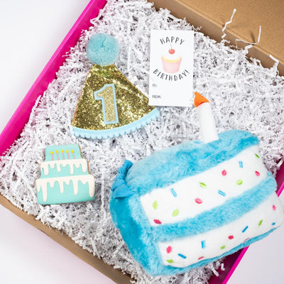 1st Barkday Gift Set (Blue and Pink)-Puppy Care Package-Gift Spawt