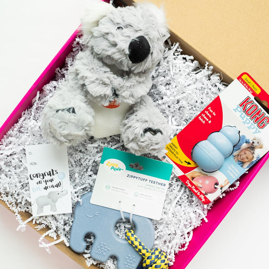 New Puppy Gift Set-Puppy Care Package-Gift Spawt