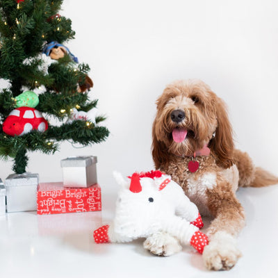 Magical Christmas Gift Set-Puppy Care Package-Gift Spawt