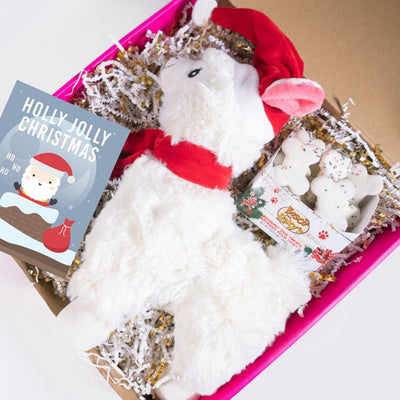 Have a Llamazing Christmas Gift Set-Puppy Care Package-Gift Spawt