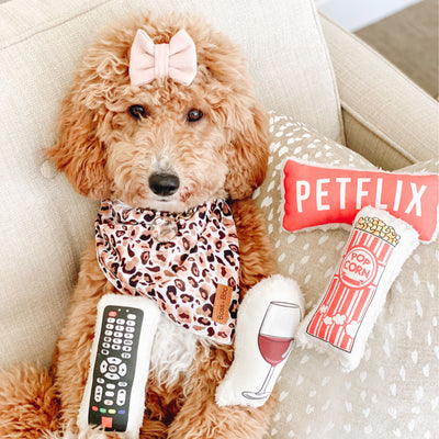 Petflix and Chill Gift Set-Puppy Care Package-Gift Spawt