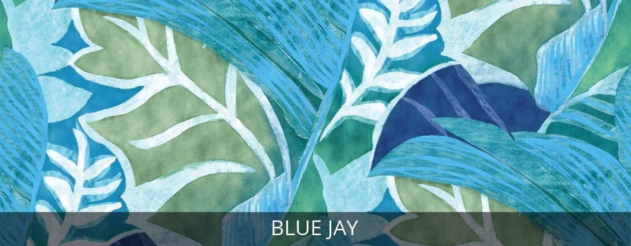 Blue Jay - jamsworld.com