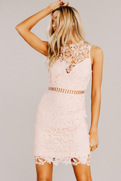 MISS ELEGANT LACE DRESS