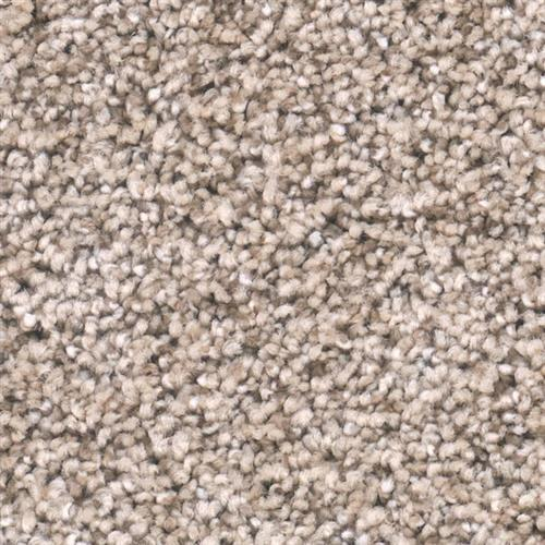 dwcarpet Soft Essentials I