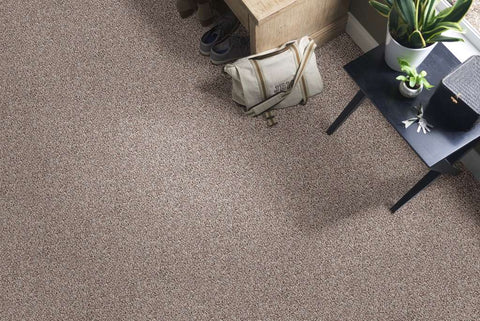 Shaw Color Flair Residential Carpet - Toast
