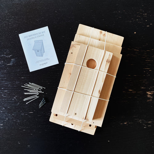 Little Neighbor Birdhouse DIY Kit