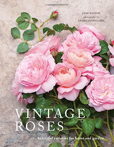 Vintage Roses - Beautiful Varieties for Home and Garden