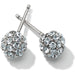 Brighton Chara Stud Earrings - JA3821