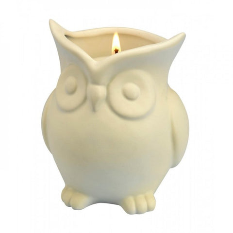 White Birch Scented Owl Candle