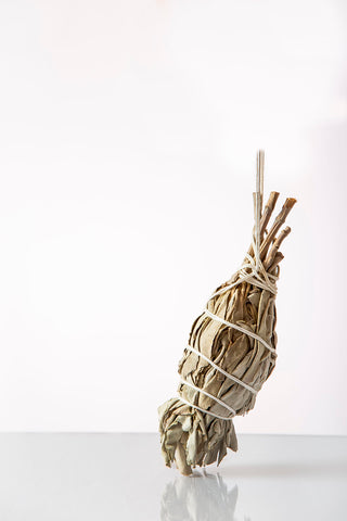 Torch White Sage Smudge Stick