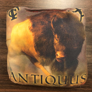 Antiquus Big Tex Series Cornhole Bags