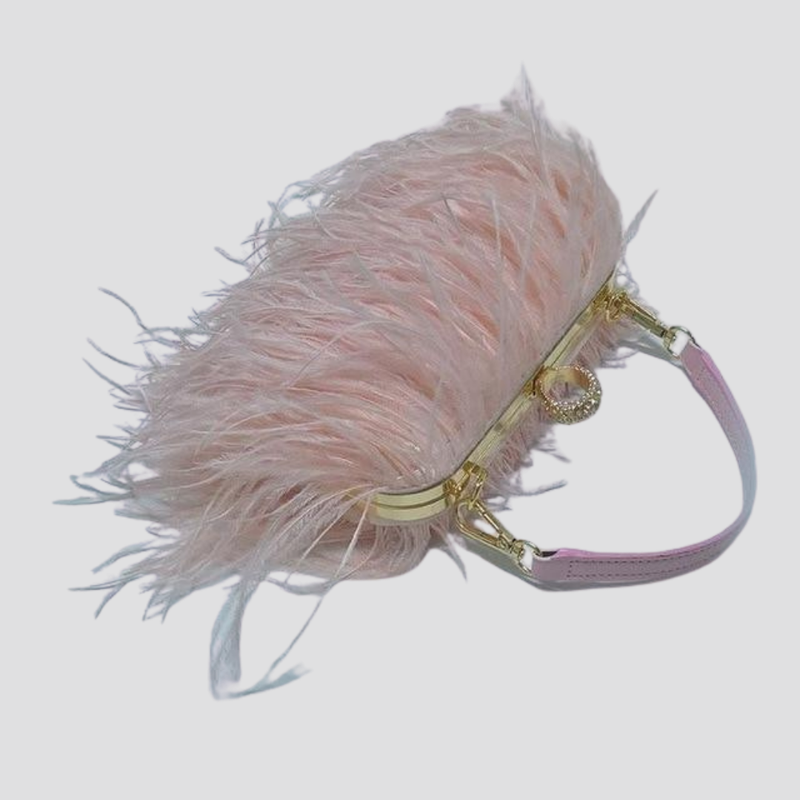 Straight Feather Crystal Clasp Bag acrylic bag God's Gift London