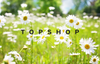 Is Topshop sustainable and eco friendly?