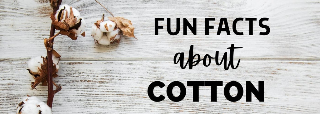 fun facts about cotton