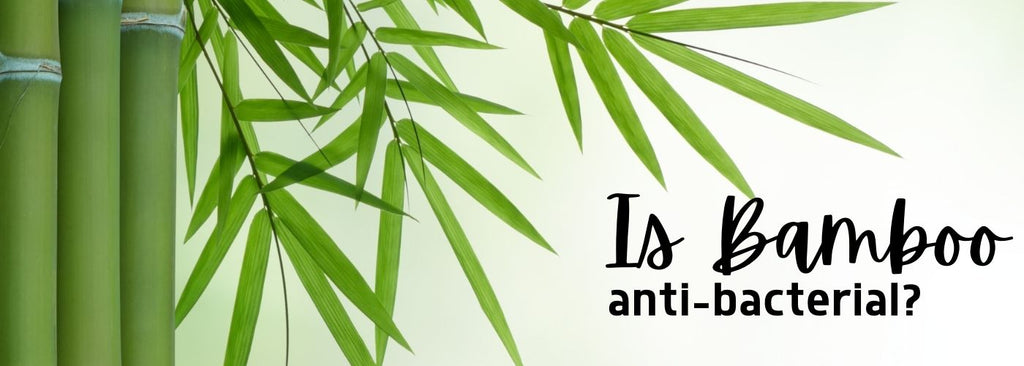 Evidence to support the fact bamboo is really anti-bacterial